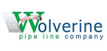 testimonial-logo-wolverine